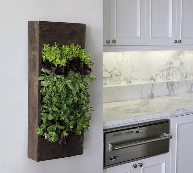 Современный Кухня by Bright Green