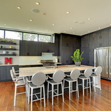 Contemporary Kitchen Kitchen