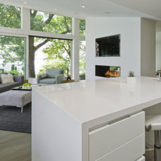 Contemporary Kitchen by Ginkgo House Architecture