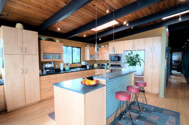 Modern Kitchen by Louise Lakier
