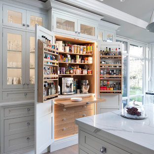 Design ideas for a traditional kitchen pantry in Dublin with flat-panel cabinets, light wood cabinets and light hardwood flooring.