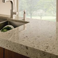 Contemporary Kitchen by Progressive Countertop Systems
