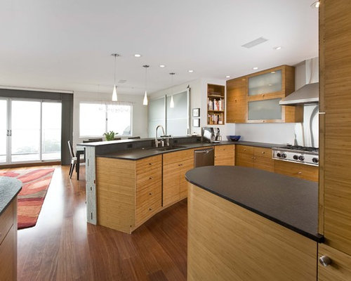 Frosted Glass Cabinet Doors | Houzz