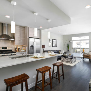 Contemporary open concept kitchen pictures - Inspiration for a contemporary galley dark wood floor open concept kitchen remodel in Chicago with an undermount sink, flat-panel cabinets, gray cabinets, gray backsplash, subway tile backsplash, stainless steel appliances and an island
