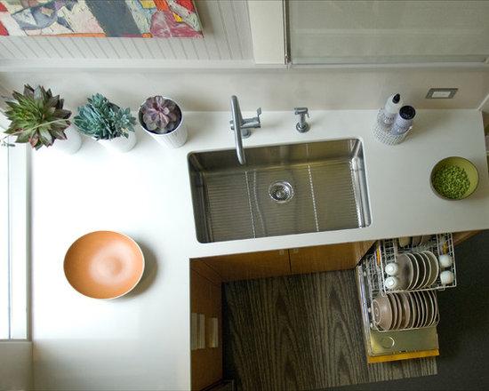 Kitchen Sink Design Photos Houzz