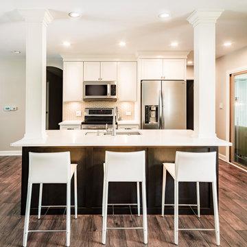 Kitchen Remodel in Des Plaines