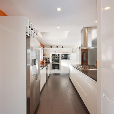Inspiration for a contemporary galley kitchen remodel in Other with stainless steel appliances, flat-panel cabinets, white cabinets and quartz countertops