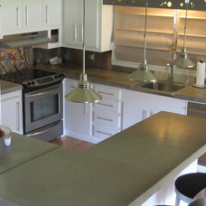 Contemporary Kitchen kitchen renovation for $3000 BUDGET