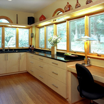 Kitchen Renovation with Maple Cabinets & big windows