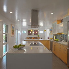 modern kitchen by Sheryl Steinberg Interior Design