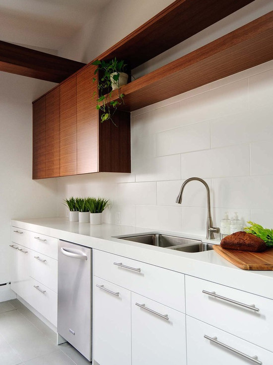 Modern White Kitchen Cabinets contemporary white kitchen cabinets | houzz