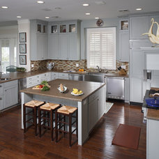Traditional Kitchen by Cabinet Innovations