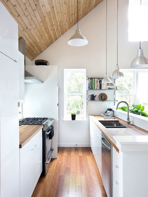 Small Scandinavian Kitchen Appliance   Example Of A Small Danish Galley Kitchen  Design In London With Part 43