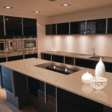 Contemporary Kitchen by LEEZA Surfaces