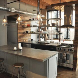 Diseño de cocina comedor lineal, urbana, de tamaño medio, con fregadero bajoencimera, armarios estilo shaker, puertas de armario grises, encimera de zinc, electrodomésticos de acero inoxidable, suelo de madera oscura y una isla