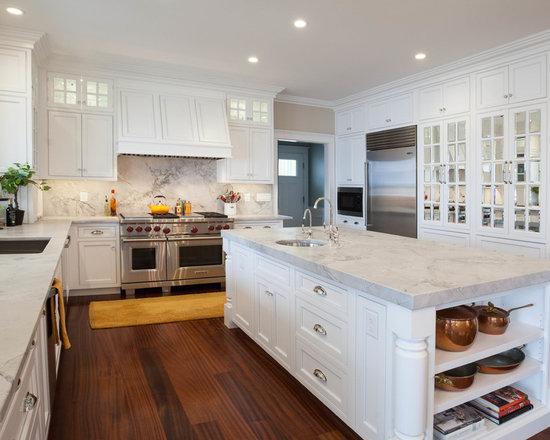 Mirror Kitchen CabinetMirror Kitchen Cabinet   Houzz. Mirrored Kitchen Cabinets. Home Design Ideas