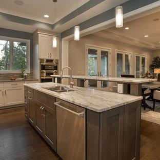 シンシナティの広いモダンスタイルのおしゃれなキッチン (ドロップインシンク、フラットパネル扉のキャビネット、グレーのキャビネット、御影石カウンター、ベージュキッチンパネル、ガラスタイルのキッチンパネル、シルバーの調理設備、無垢フローリング) の写真