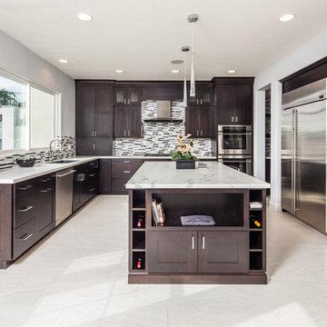 La Costa Modern Design and Home Remodel
