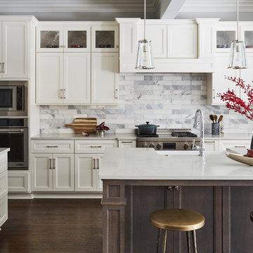 La Grange Park Residence - Kitchen