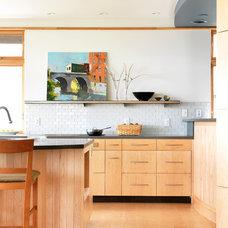 Contemporary Kitchen by BRAD RABINOWITZ ARCHITECT
