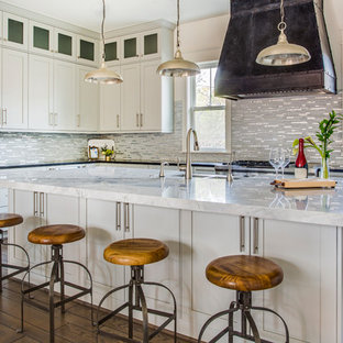 Silver Gray Kitchen Ideas Photos Houzz - Silver gray kitchen cabinets
