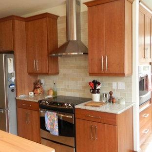 ワシントンD.C.の広いモダンスタイルのおしゃれなキッチン (アンダーカウンターシンク、フラットパネル扉のキャビネット、淡色木目調キャビネット、クオーツストーンカウンター、シルバーの調理設備、淡色無垢フローリング) の写真