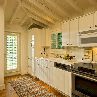 Ispirazione per una cucina ad ambiente unico tropicale con lavello a doppia vasca e ante beige