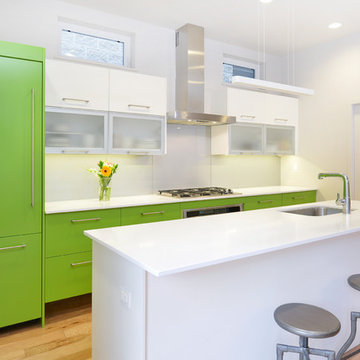 LEED Platinum Prefab Home In West Town