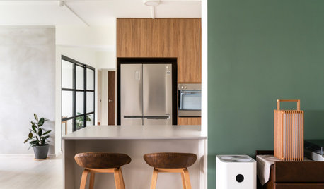 Houzz Tour: Executive Flat Opens up to Sun, Breeze and Friends