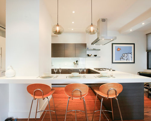 inspiration for a light wood floor kitchen remodel in new york with flatpanel