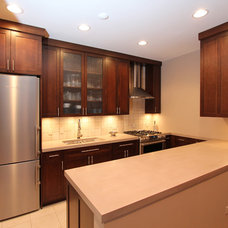 Contemporary Kitchen by Design Build 4U Chicago