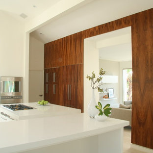 Design ideas for a modern kitchen in Los Angeles.