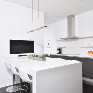 Mid-sized modern eat-in kitchen ideas - Mid-sized minimalist single-wall dark wood floor eat-in kitchen photo in DC Metro with an undermount sink, flat-panel cabinets, black cabinets, stainless steel appliances and solid surface countertops