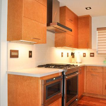 Loma Verde Contemporary Kitchen