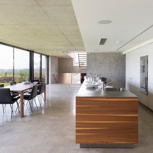 Foto de cocina comedor de galera, minimalista, grande, con fregadero bajoencimera, armarios con paneles lisos, puertas de armario blancas, suelo de cemento, una isla y electrodomésticos de acero inoxidable