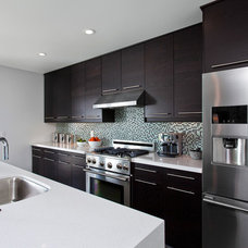 Contemporary Kitchen by Robert Frank Design