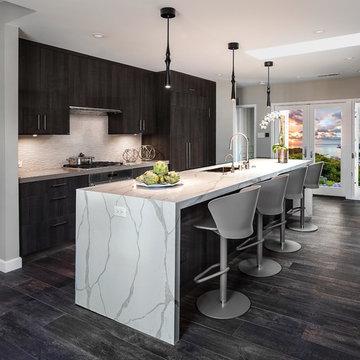 Luxe Modern Kitchen