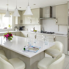 Transitional Kitchen by Kate Lovejoy Design and Interiors