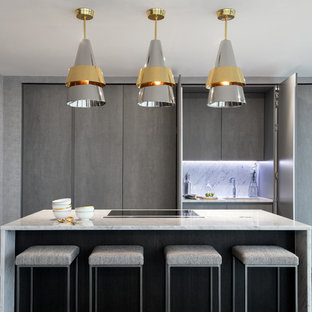 Inspiration for a contemporary single-wall kitchen in London with a submerged sink, flat-panel cabinets, grey cabinets, black appliances, dark hardwood flooring and an island.