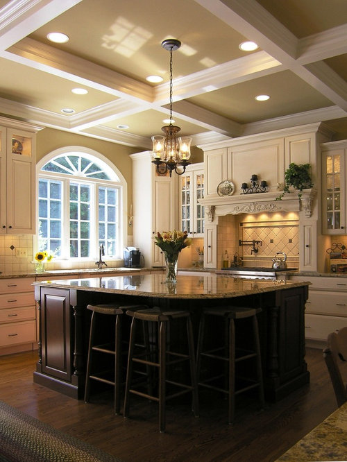 Vaulted ceiling island hood home design ideas renovations for Houzz