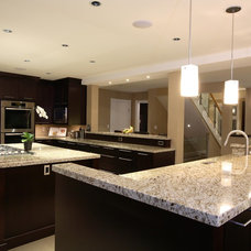Transitional Kitchen by Synthesis Design Inc.