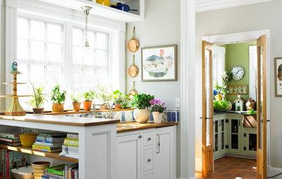 Eksperterne: Dyrk spiselige planter i vindueskarmen
