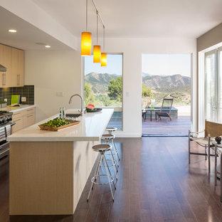 Trendy galley dark wood floor enclosed kitchen photo in San Francisco with an undermount sink & Dark Floor Light Cabinet | Houzz