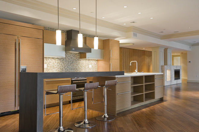Contemporary Kitchen by Candida L. Berrios