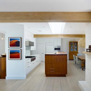 Diseño de cocina minimalista con electrodomésticos con paneles