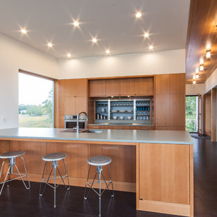 Large modern eat-in kitchen designs - Example of a large minimalist single-wall cork floor eat-in kitchen design in Other with a single-bowl sink, flat-panel cabinets, medium tone wood cabinets, quartzite countertops, paneled appliances and an island