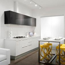 Modern Kitchen by Insight Design Group