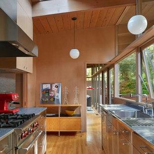 Diseño de cocina de galera, retro, pequeña, con fregadero encastrado, armarios con paneles lisos, puertas de armario en acero inoxidable, suelo de madera en tonos medios y electrodomésticos de acero inoxidable