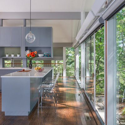 Small 1950s l-shaped dark wood floor eat-in kitchen photo in Boston with a single-bowl sink, flat-panel cabinets, gray cabinets, quartz countertops, stainless steel appliances and an island