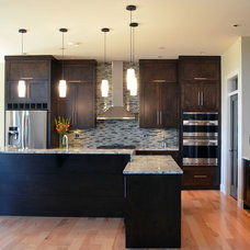 Contemporary Kitchen by Mid Island Cabinets